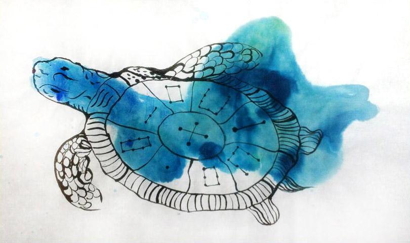 Lo River Turtle 3